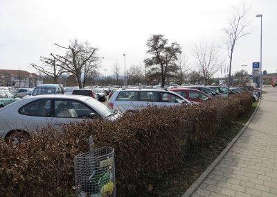 2013_BadKrozingen_IMG_0064
