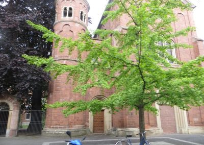 2014-Deutschland-Trier_IMG_1836