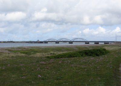 2015-Daenemark-Oddesund-Brücke_3325