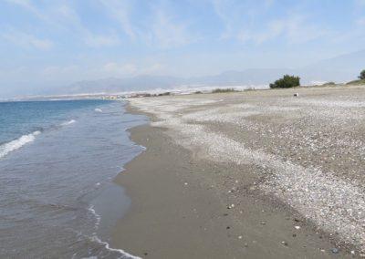 2017-Spanien-Balerma-Beach-IMG_5267