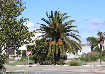 2017-Spanien-Narbonne-IMG_0294