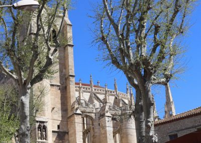 2017-Spanien-Narbonne-IMG_0303