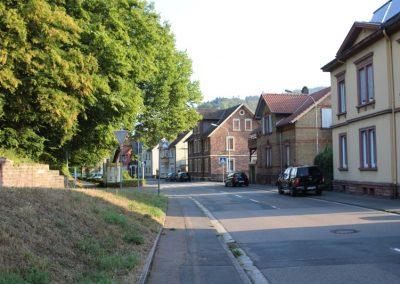 2018-Neckar_IMG_1515