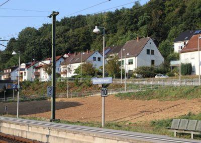 2018-Neckar_IMG_1520