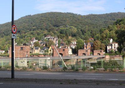 2018-Neckar_IMG_1524