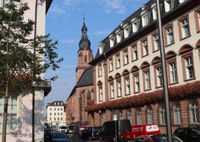 2018-Neckar_IMG_1537