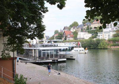 2018-Neckar_IMG_1551