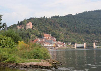 2018-Neckar_IMG_1585