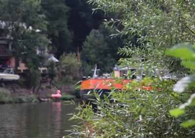 2018-Neckar_IMG_1588