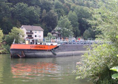 2018-Neckar_IMG_1590