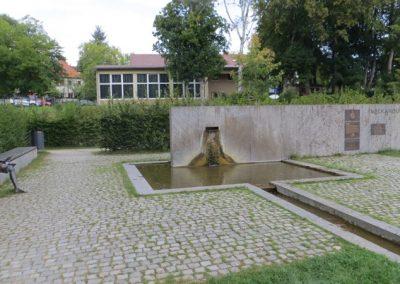 2018-Neckar_IMG_5679