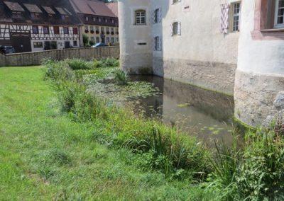 2018-Neckar_IMG_5694