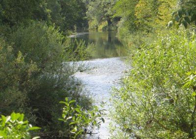 2018-Neckar_IMG_5718