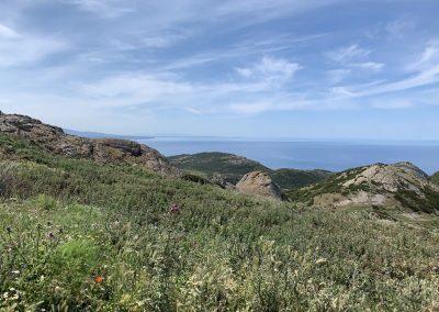 2019-08-Alghero_IMG_3414
