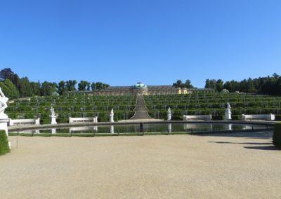 Sanssoucipark_4549