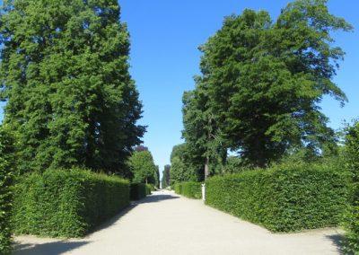 Sanssoucipark_4552